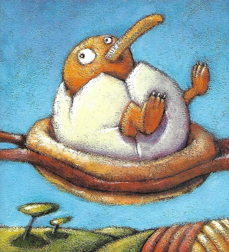 胖鸟球球儿童故事绘本分享